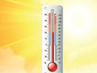Le stress de chaleur chez les animaux de rente