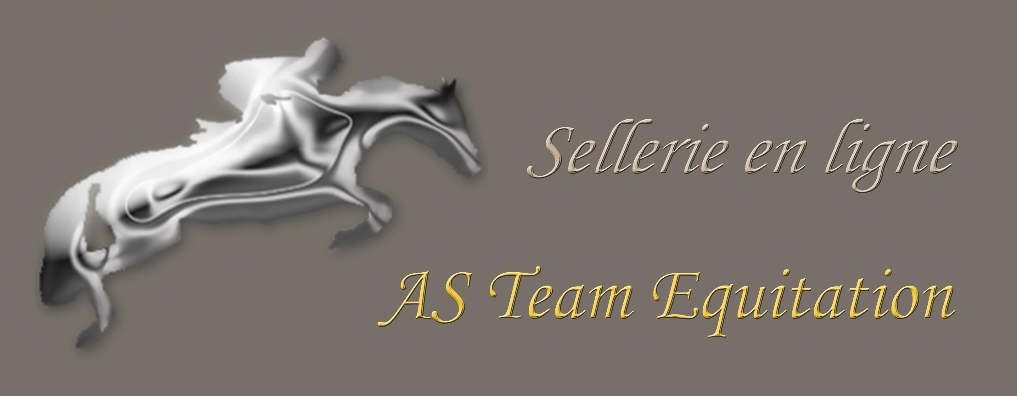 Logo AS Team 2013 - ok.jpg