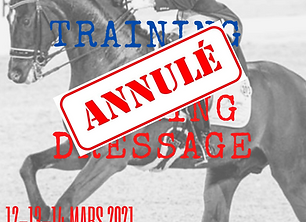 AFFICHE TRAINING JUDGING 2021 (4).png
