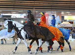 SPORT-DRESSAGE-EQUITA-CLUB-CARROUSEL.jpg