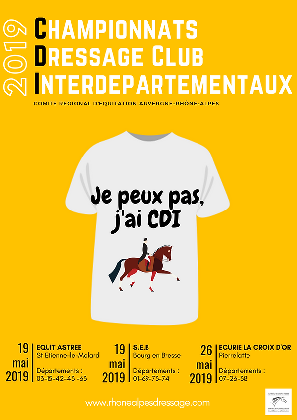 AFFICHE CDI2019.png