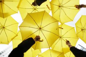 NYT Umbrellas.jpg