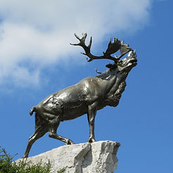 Bronze Caribou at Newfoundland Park – Western Front Witness - WW1 Battlefields Audio Guide – Somme Witness