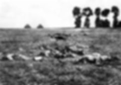 Aftermath Battle of the Marne–Western Front Witness– Battle of the Marne September 1914– British Army WW1