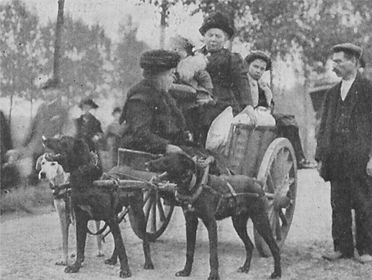 Belgian Refugees Pass British Army in Retreat from Mons–Western Front Witness –Retreat from Mons August 1914 –Battle of Mons
