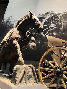McHoul's High Vis Horse–Western Front Witness–Animals in WW1-Horses in WW1-Dogs in WW1