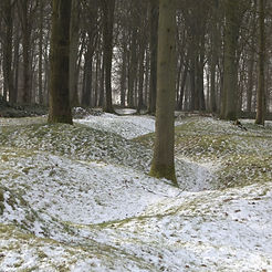 Delville Wood – Western Front Witness - WW1 Battlefields Audio Guide – Somme Witness- WW1 sites to visit
