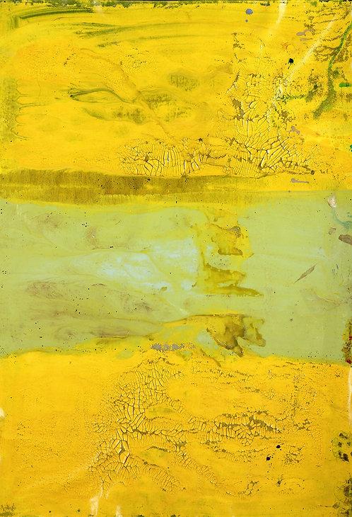 Untitled (Cat. 14665)