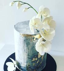 Concrete Orchids