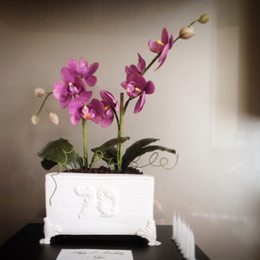 Orchid planter box