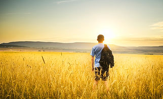 man-on-yellow-wheat-meadow.-516893118_13
