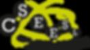 logo-cseesl-gros.png