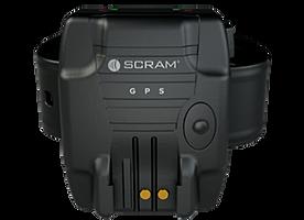 scram-reno-1.png