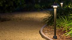 Path and Area Lights