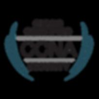 cisco_ccna_security.png
