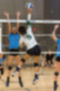 Sporting South Photography Volleyball Player outside hitter hitting ball action image