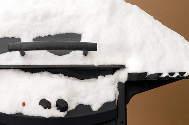 gas grill cover for winter