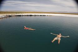 Cejar Lagoon - Atacama Desert