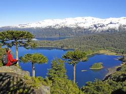 Conguillio N.P.- Lake District
