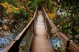 ponte.compactas-1-2.jpg