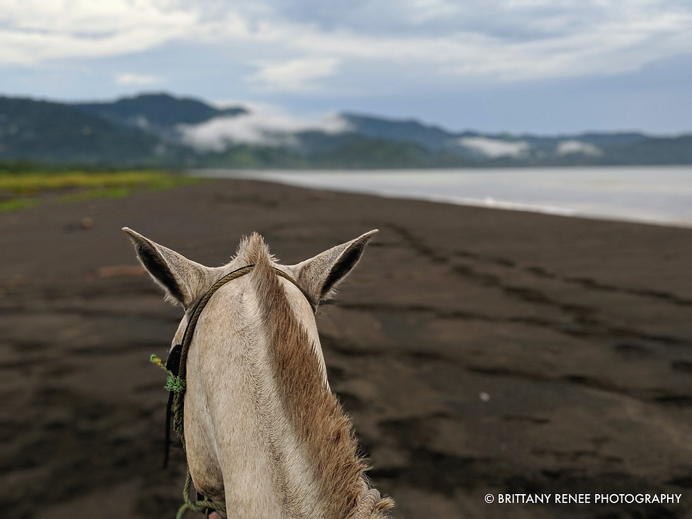 Horseback Riding on beach near Jaco, Costa Rica