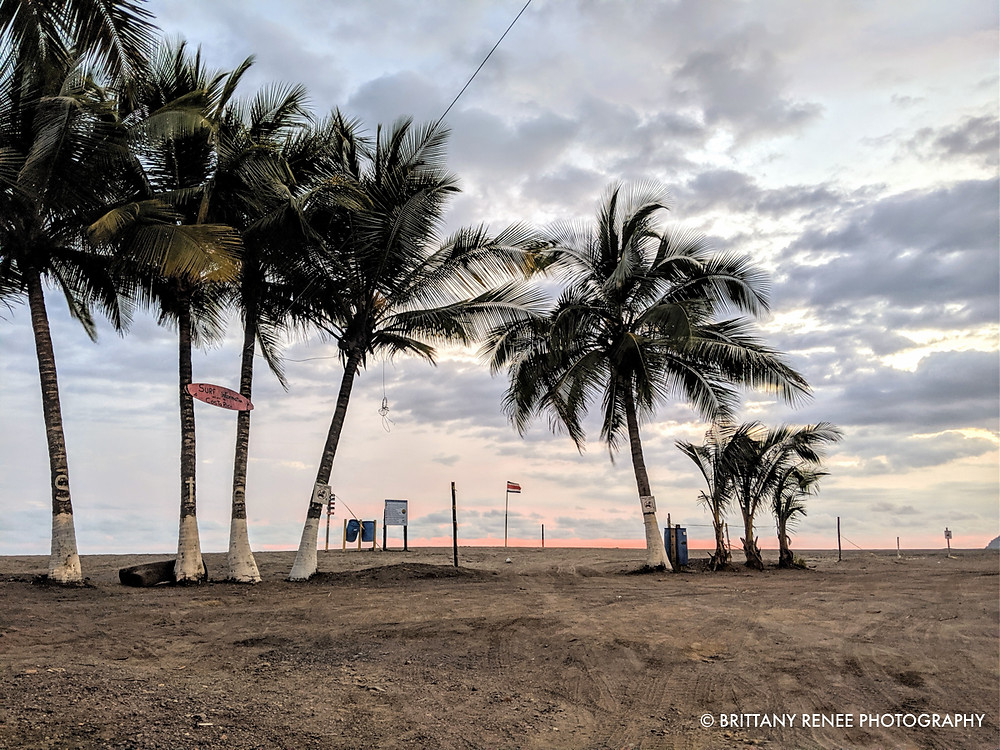 Jaco Beach, Palm Trees and Sunset
