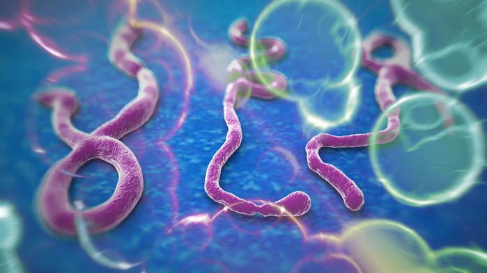 Ebola Safety