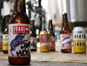 Feral Brewing Co. gives independent beer a big flick