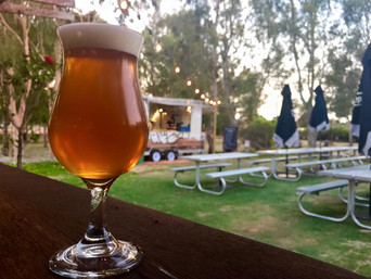 Brewing the best time for WA Beer Week