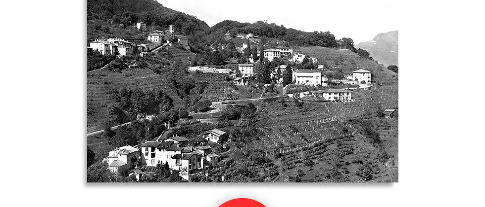 Malcantone panorama anno 1950 c.a.