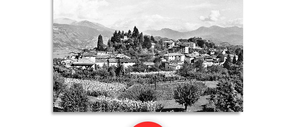 Montagnola, Collina D'oro anno 1950 c.a.
