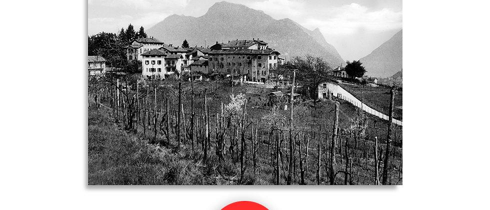 Certenago Collina D'oro anno 1940 c.a.