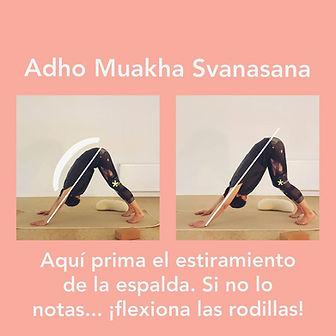 clases particulares de yoga 2.jpg