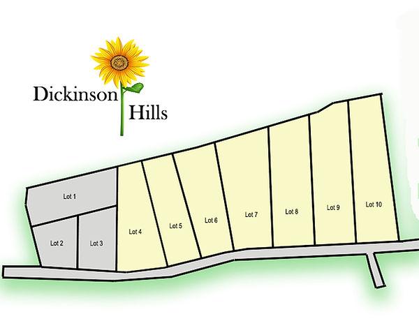 Dickinson Hills Marketing Plat.jpg