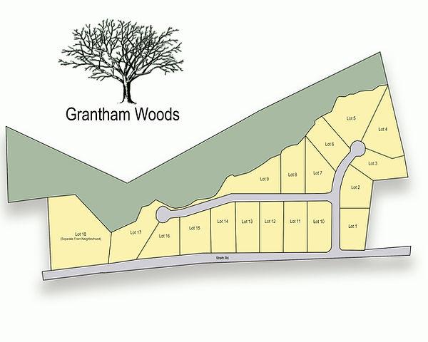 Grantham Woods Marketing Plat.jpg