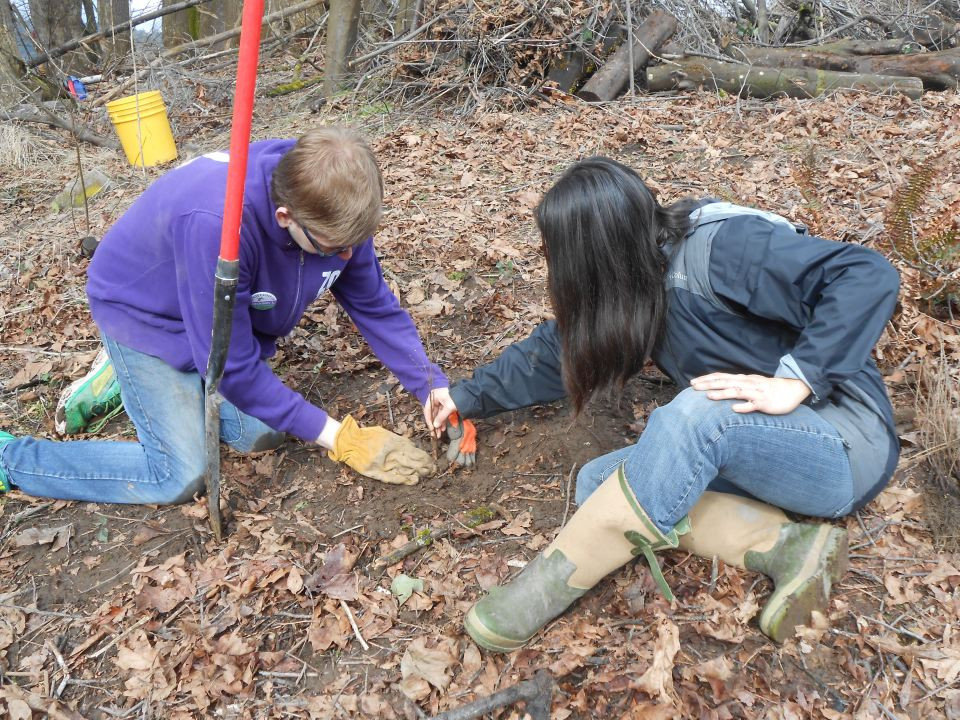 Two people crouch on the ground, planting a small seedling