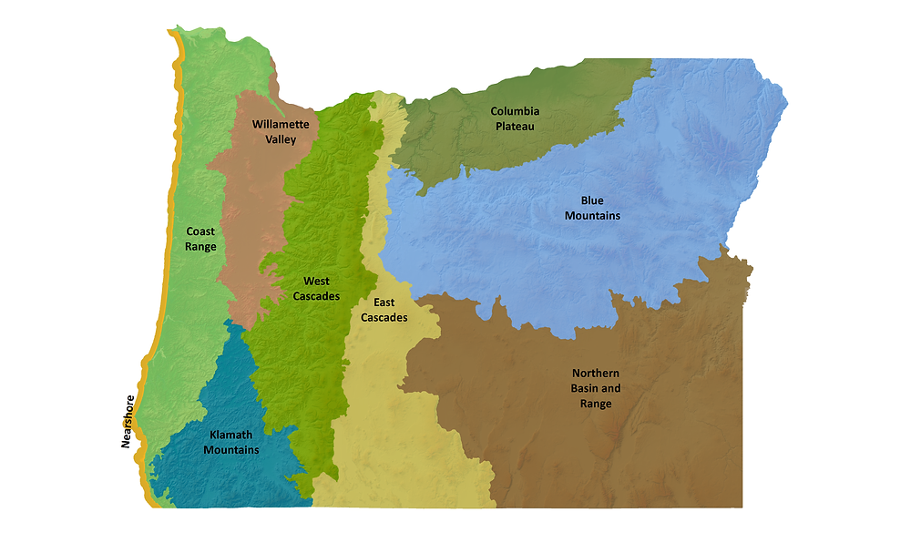 Outline of Oregon state, with multicolor segments filled in designating 9 different ecoregions.