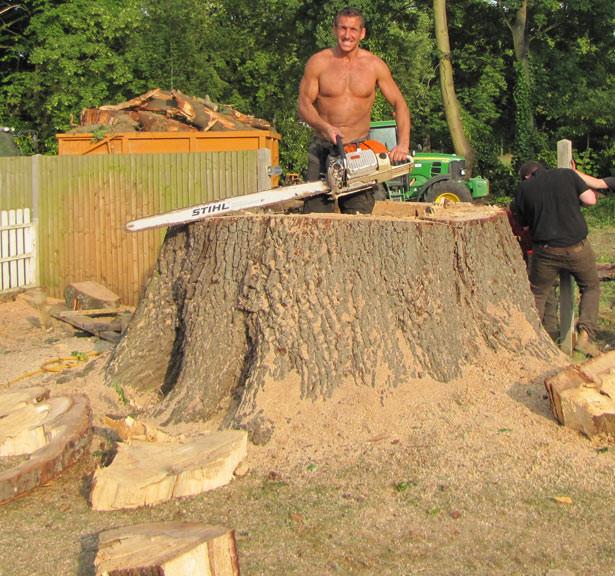 Tree Surgeon Safety