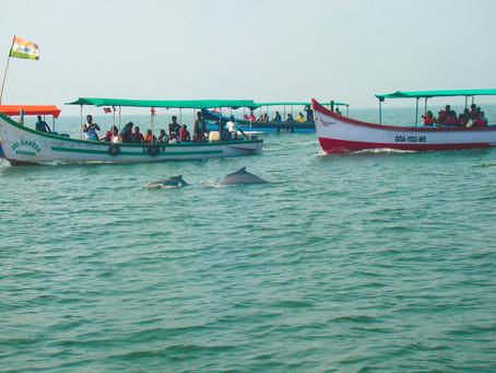Goa: Day 3