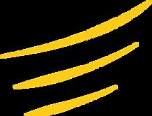 Triple yellow dash@2x.png