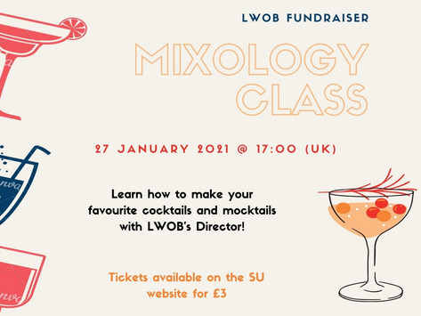 Lawyers Without Borders Mixology Class