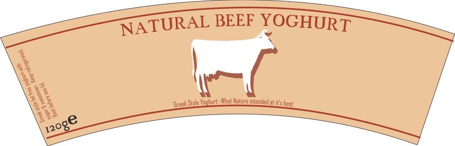 beef yoghurt.jpg