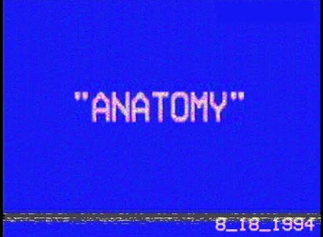 Anatomy (2016)