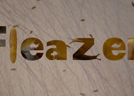 Fleazer (2018)