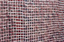 Dani Miret : gran ret (detail)
