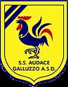 AUDACE GALLUZZO.png