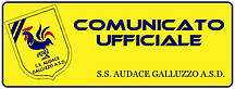 COMUNICATO UFFICIALE.png