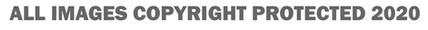Copyright Notice