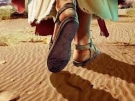 Walking the Path of Jesus