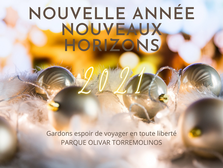 Nouvelle année, nouveaux horizons